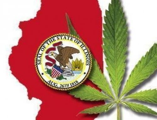 CANNABIS USE LAW COULD MEAN JOB GROWTH THROUGHOUT ILLINOIS