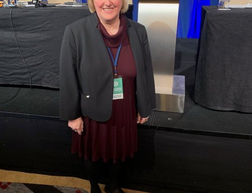 2020 IN FOCUS: THE PATH TO BECOMING A DELEGATE TO THE DEMOCRATIC NATIONAL CONVENTION
