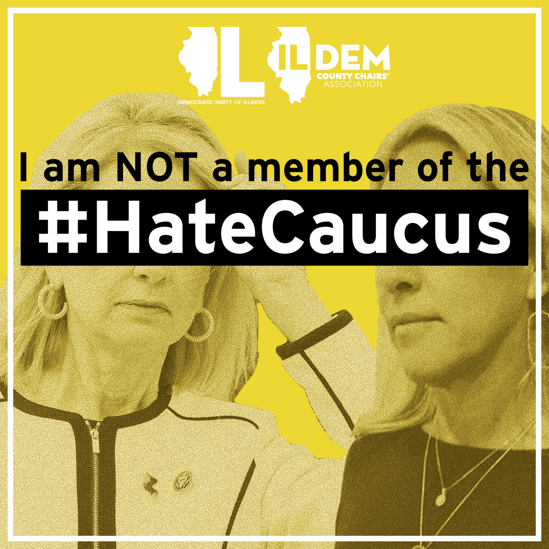 Mary Miller and Marjorie Taylor Greene Do Not Represent Illinois